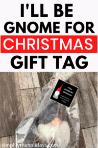 Gnome in bag with gift tag